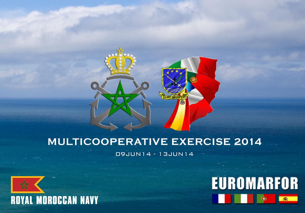 Multicooperative Exercise 2014 EMF_MCE14-00